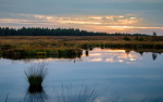 Eskerflect-Christian-Blog-Wetlands-Zeall-1024x640