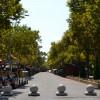 Памятник природы «Парк Солнечный остров»
